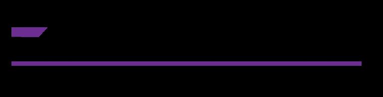EZ_Conceal_Logo_FC